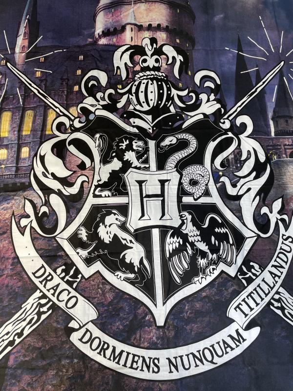 Harry Potter (Hogwarts), 2 dalių patalynės komplektas